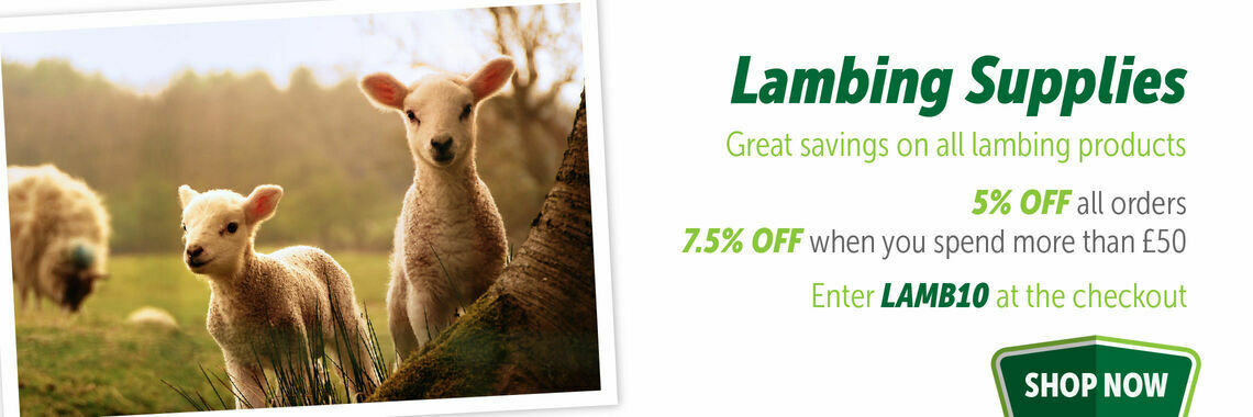 lambing offer