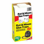 The Big Cheese Rat & Mouse Glue Trap - 36 Value Pack