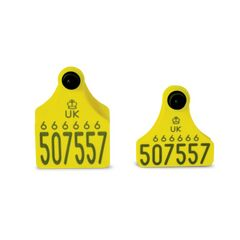 Double Replacement Cattle Tag