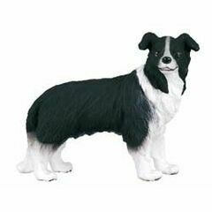 CollectA Border Collie Figure
