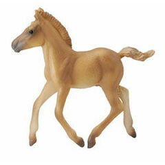 CollectA Haflinger Foal Walking