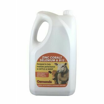 Cattle Health and Supplements