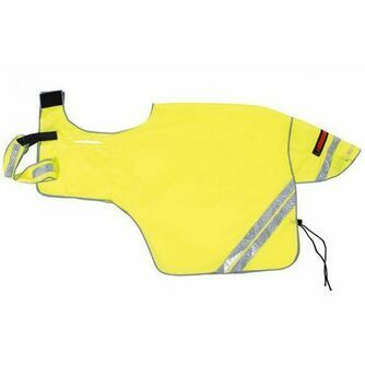 Hi Visibility For Horses