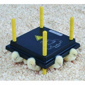 Incubators & Chick Brooders