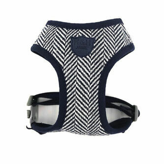 Dog Leads and Harnesses