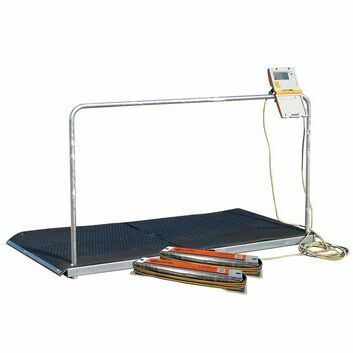 Gallagher Platform for Horse Weighing