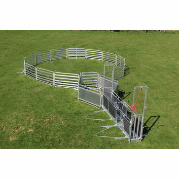 Alligator Basic Sheep Handling System