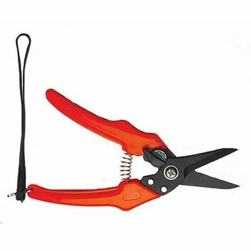 Ritchey Trafalgar Lightweight Footrot Shears
