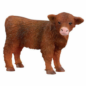 CollectA Highland Calf (Standing)