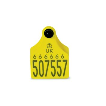 Single Replacement Cattle Tag