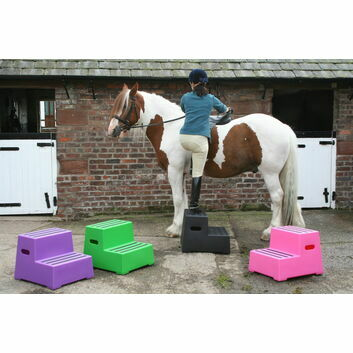 Classic Showjumps Premium Mounting Block Two Tread