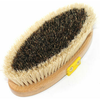 Equerry Body Brush Medium Mexican Fibre S.D67