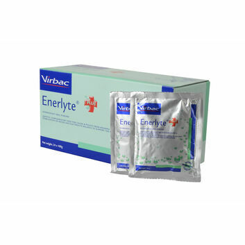 Enerlyte Plus - 24 X 100 GM SACHET