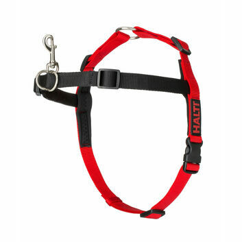 HALTI Harness Black/Red