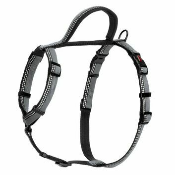 HALTI Walking Harness Black