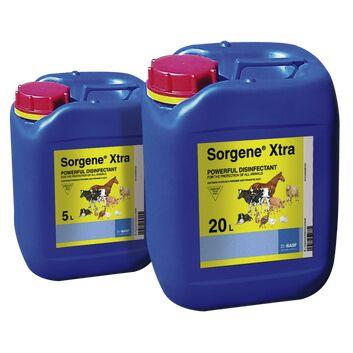 Sorgene Xtra Disinfectant