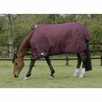 JHL Essential Turnout Rug Mediumweight Burgundy/Navy