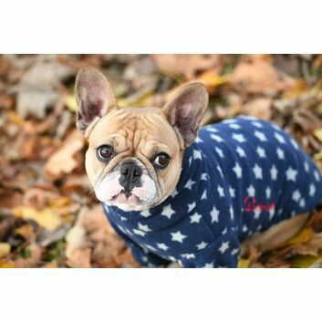 Woofmasta AW18 Dog Jumpaw Navy