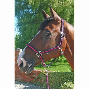 JHL Headcollar Comfort - Pony