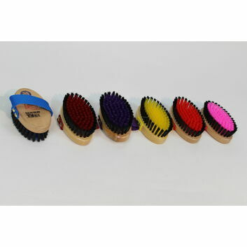 Equerry Body Brush Small x 6 Pack - ASSORTED COLOURS