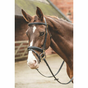 Mark Todd Bridle with Clips - Full