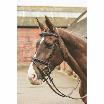 Mark Todd Bridle Raised Contrast Stitch - Full