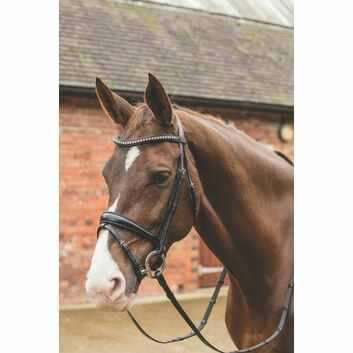 Mark Todd Bridle Dressage Crystal - Full