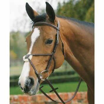 Mark Todd Bridle Plain Raised with Grackle Noseband - Cob