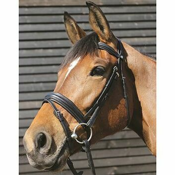 Mark Todd Bridle Padded Flash - Cob