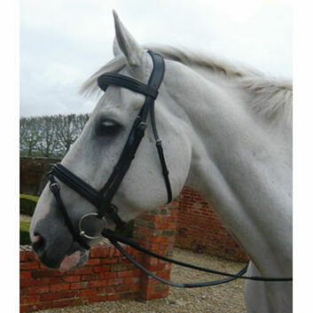 Mark Todd Bridle Double Raised - Cob