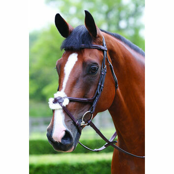 Mark Todd Bridle Performance Figure of 8 - Cob