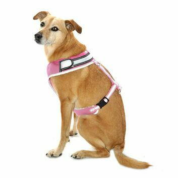 Equisafety Flashing LED Hi-Vis Reflective Dog Harness Pink