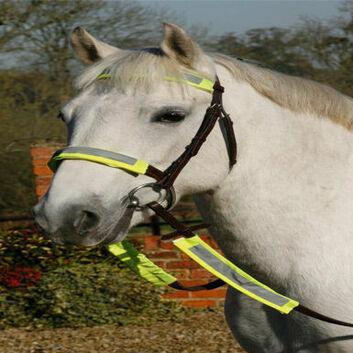 Luna Rider Reflective Bridle Kit - YELLOW