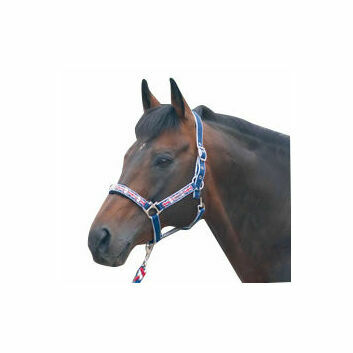 Cottage Craft Headcollar & Lead Rope Set Union Jack