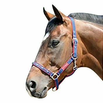 Cottage Craft Headcollar Galaxy - Pony