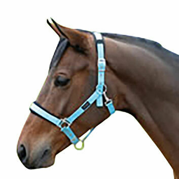 Cottage Craft Headcollar Padded - Small Pony