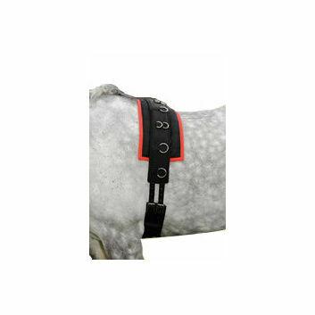 Cottage Craft Lunge Training Roller Pad - BLACK/RED