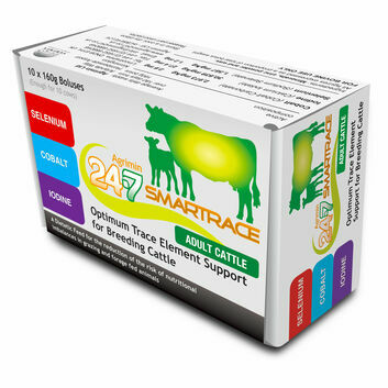 Agrimin 24-7 Smartrace for Adult Cattle - 10 PACK