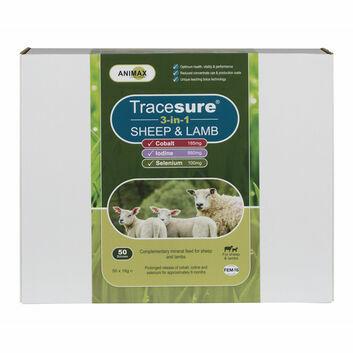 Animax Tracesure 3-in-1 Sheep & Lamb