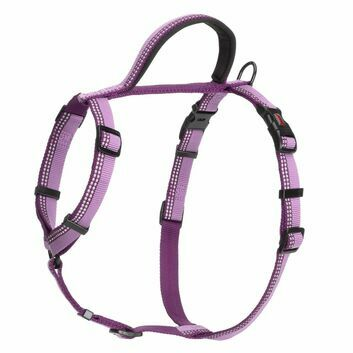 HALTI Walking Harness Purple