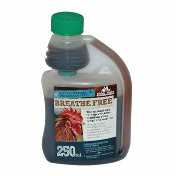 Global Herbs Poultry Breathe Free - 250 ML