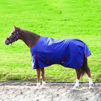 Masta TEX Basic Turnout Rug 200g Std Neck Navy