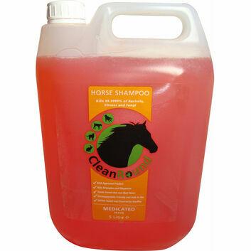 CleanRound Medicated Shampoo Peach