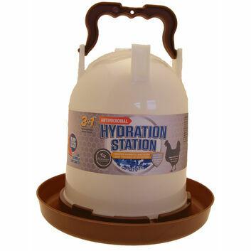 Hentastic Hydration Station