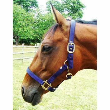 JHL Headcollar Padded - Pony