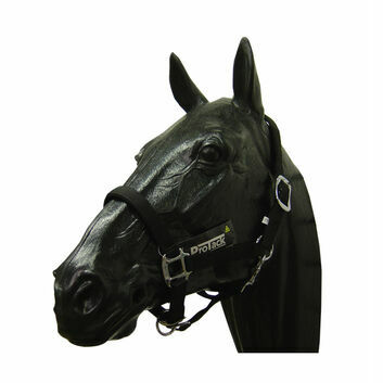 ProTack Headcollar Padded Pony