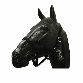 ProTack Headcollar Nylon Pony