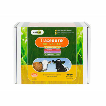 Animax Tracesure Cu/I Bolus for Cattle - 20 PACK
