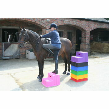 Classic Showjumps Standard Mounting Block Two Tread