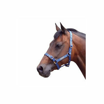 Cottage Craft Headcollar Fully Adjustable Royal